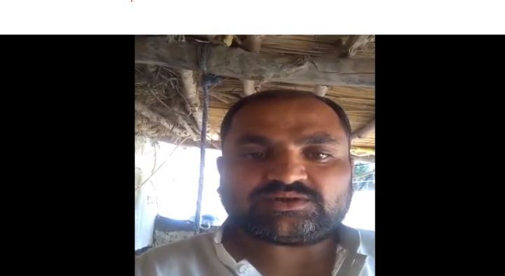 Dilshad Ali from Tyder Ali, Tando Allahyar